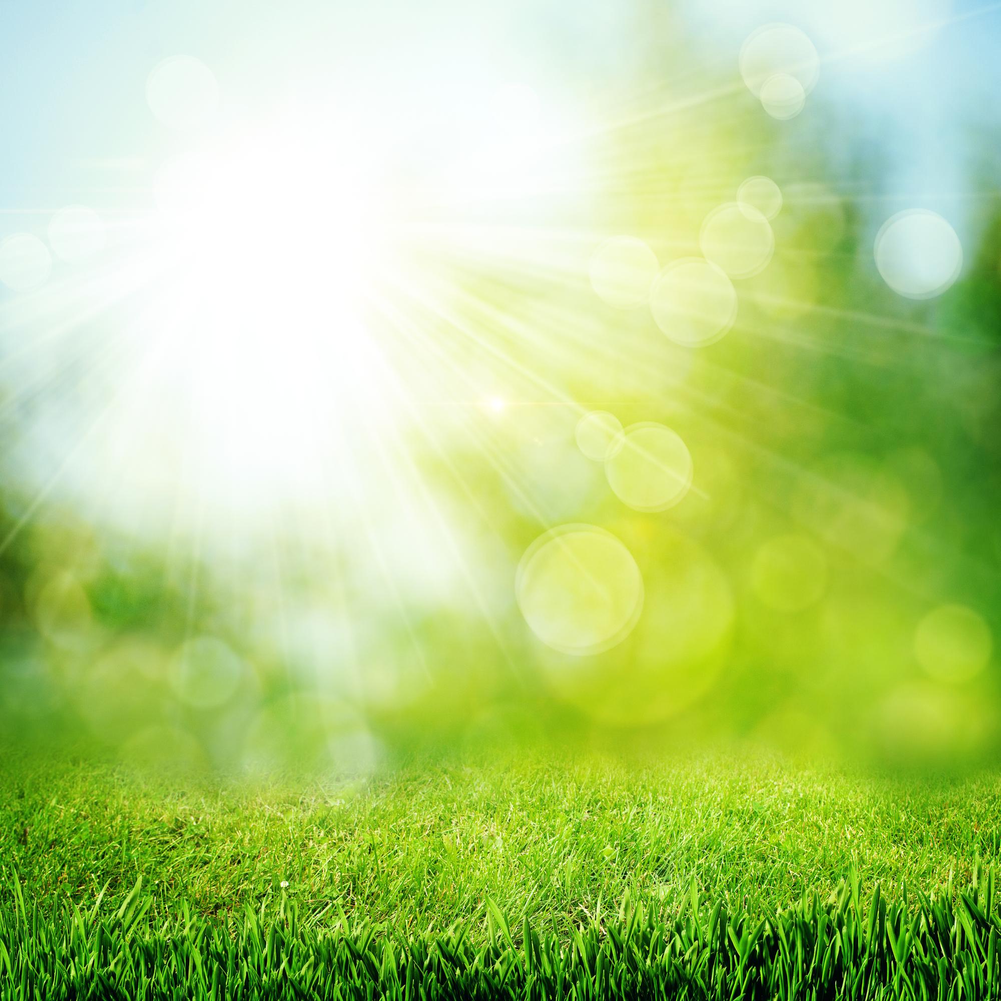 Greener Grass by Erin Hanson